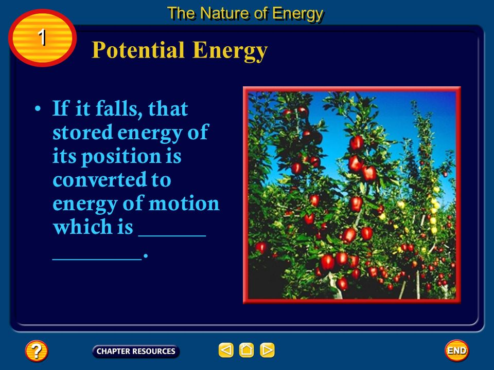 The Nature of Energy 1. Potential Energy.