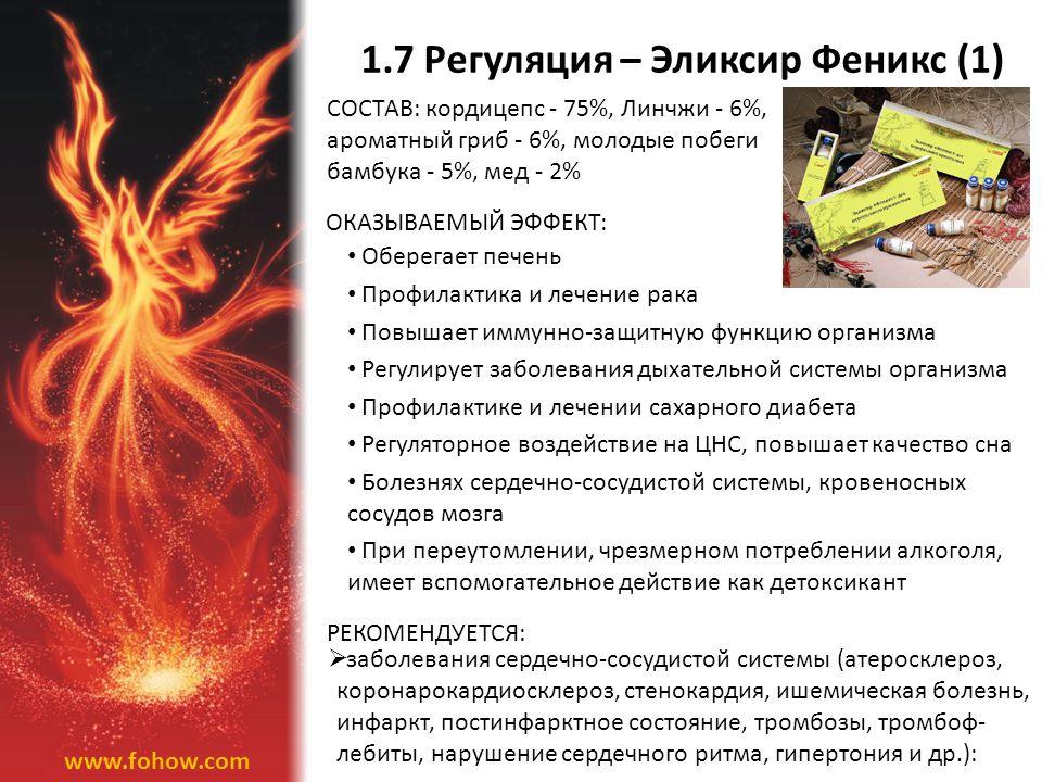 1.7 Регуляция – Эликсир Феникс (1)