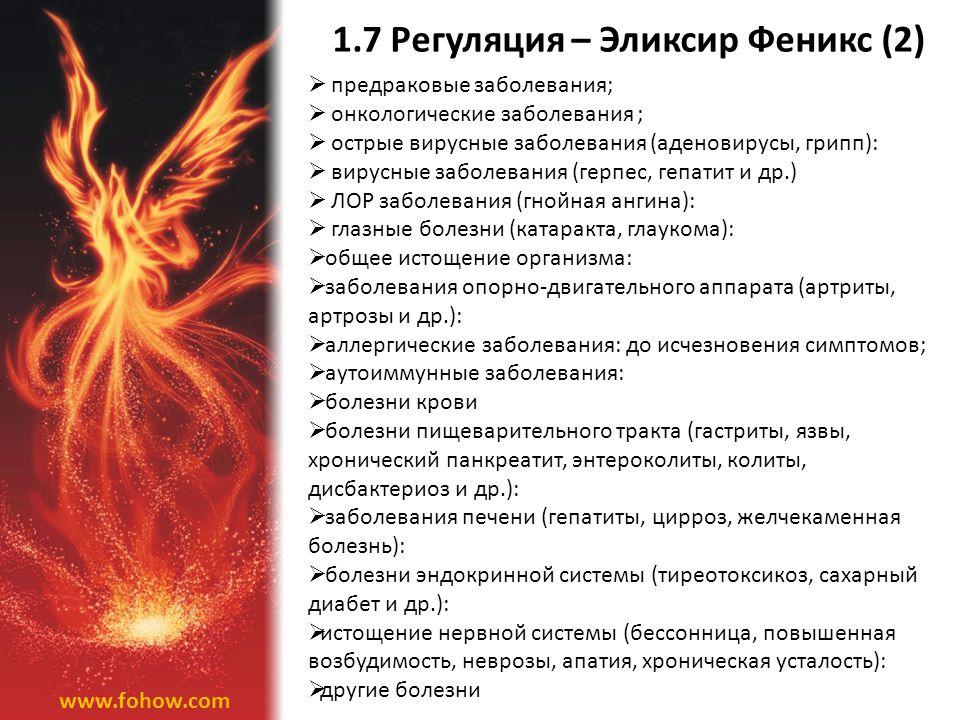 1.7 Регуляция – Эликсир Феникс (2)