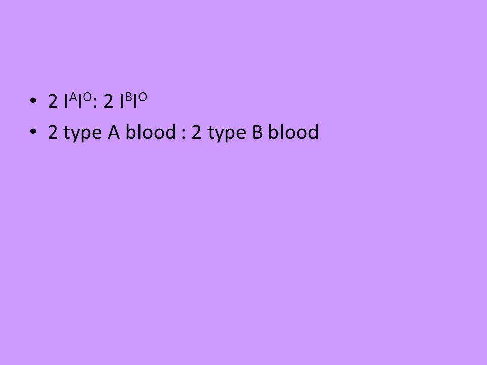 2 IAIO: 2 IBIO 2 type A blood : 2 type B blood