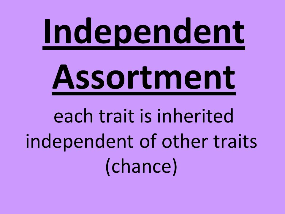 each trait is inherited independent of other traits (chance)