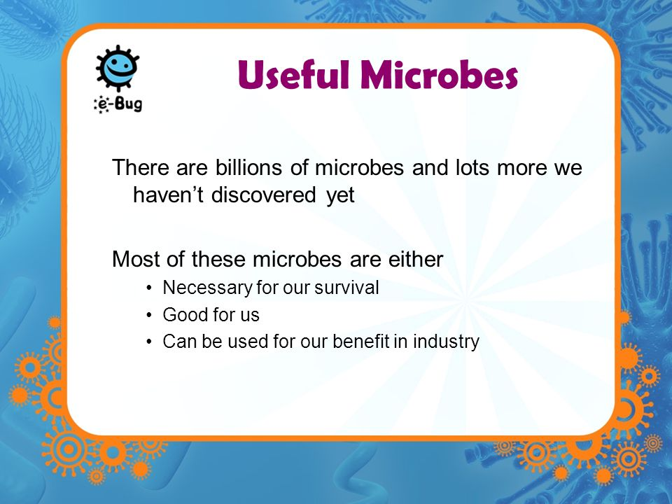Useful Microbes There are billions of microbes and lots more we haven't discovered yet. Most of these microbes are either.