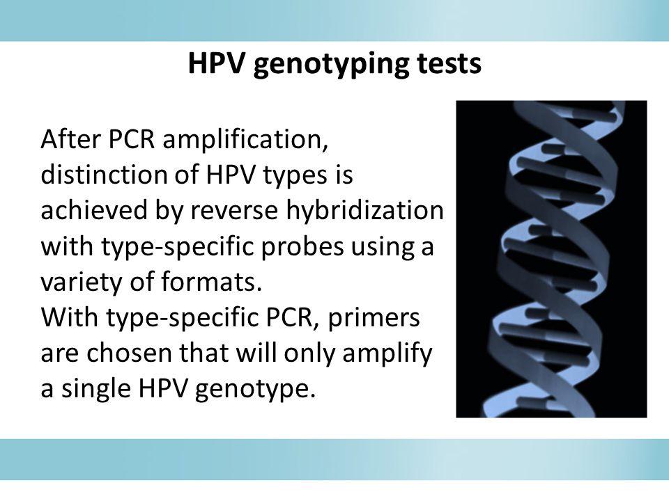 HPV genotyping tests