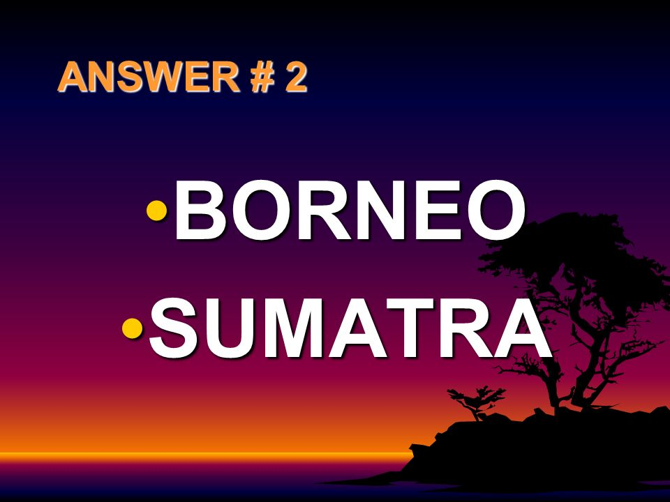 ANSWER # 2 BORNEO SUMATRA