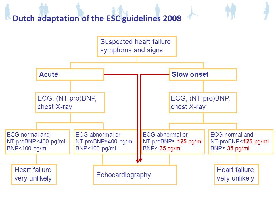 Dutch adaptation of the ESC guidelines 2008