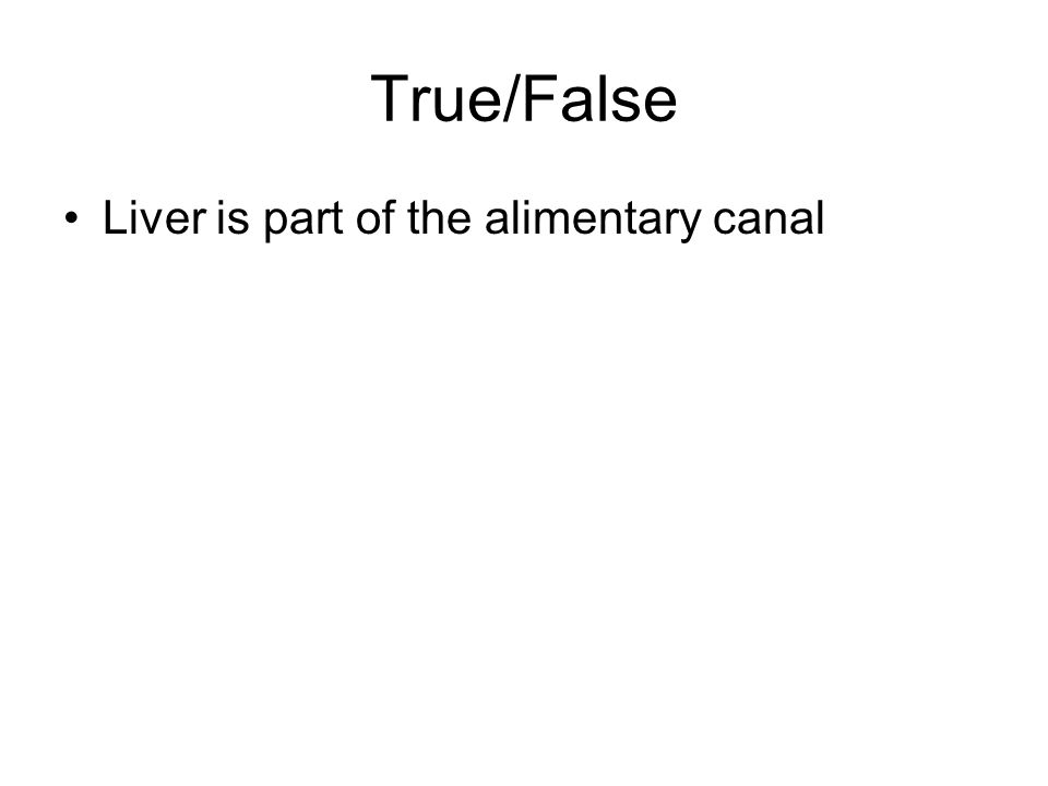 True/False Liver is part of the alimentary canal