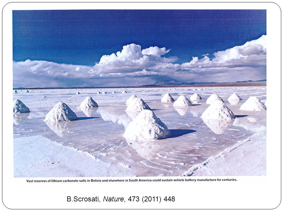 B.Scrosati, Nature, 473 (2011) 448