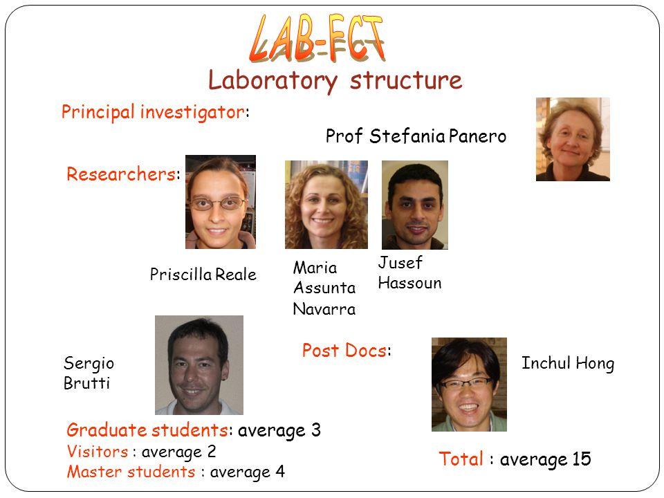 LAB-FCT Laboratory structure Principal investigator: