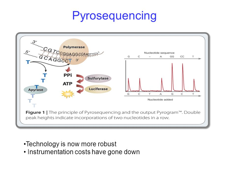 Pyrosequencing Technology is now more robust