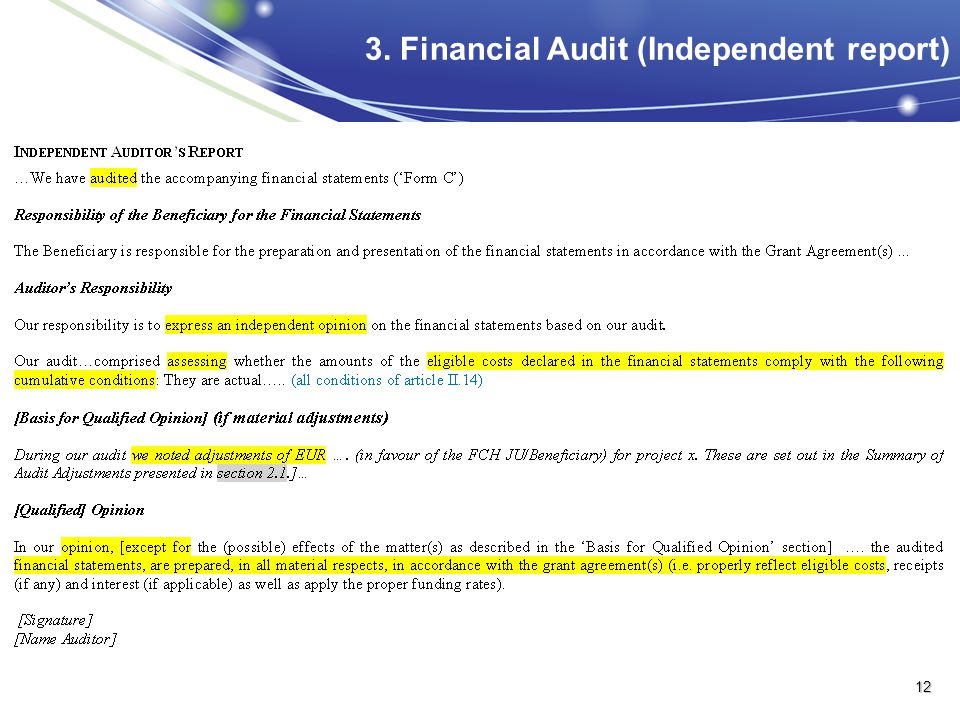 3. Financial Audit (Independent report)