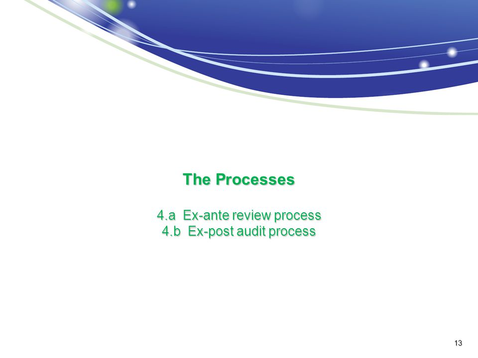 The Processes 4.a Ex-ante review process 4.b Ex-post audit process 13