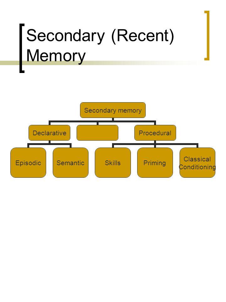 Secondary (Recent) Memory