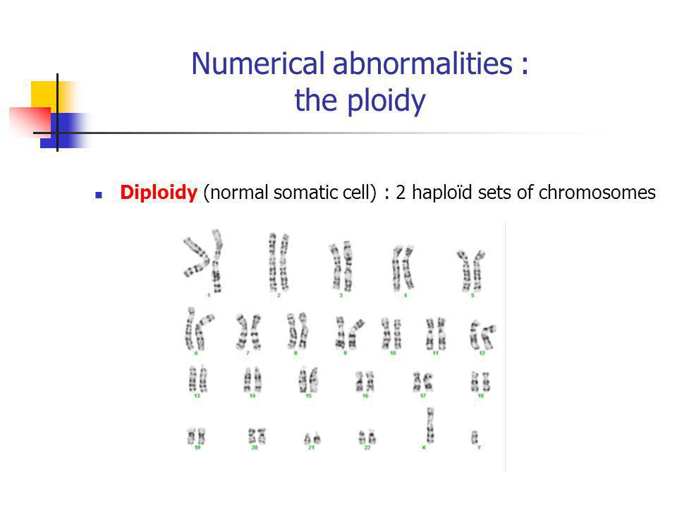 Numerical abnormalities : the ploidy