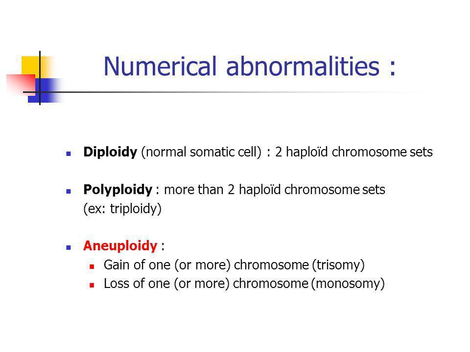 Numerical abnormalities :