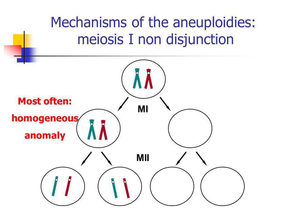 Mechanisms of the aneuploidies: meiosis I non disjunction