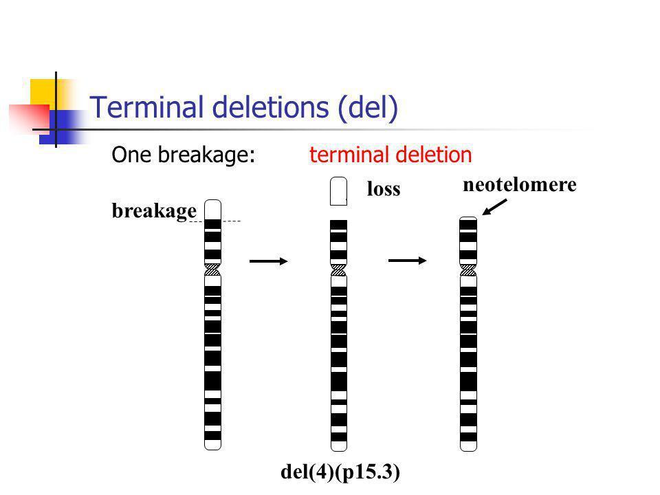 Terminal deletions (del)