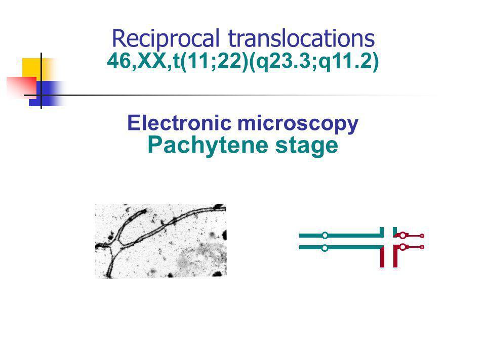 Electronic microscopy