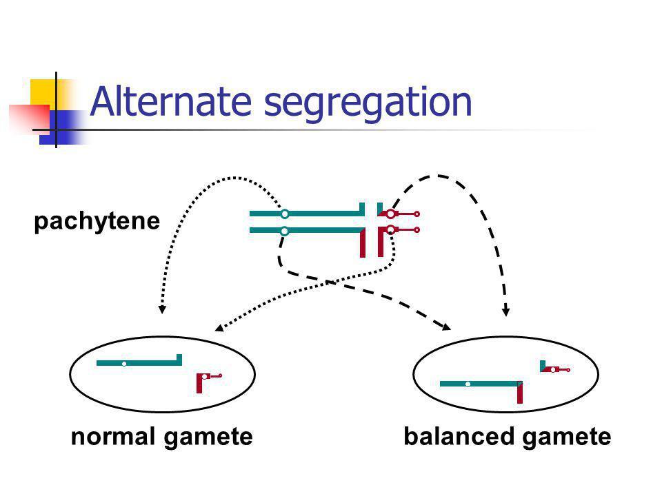 Alternate segregation