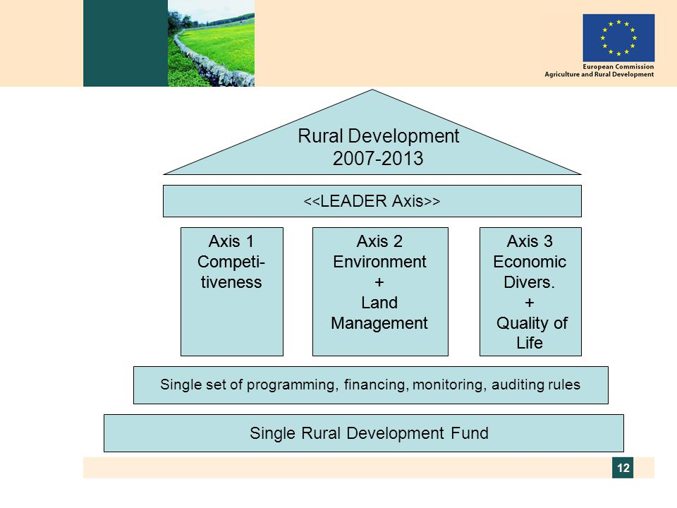 « LEADER » Axis Rural Development 2007-2013 Axis 1 Competi-tiveness