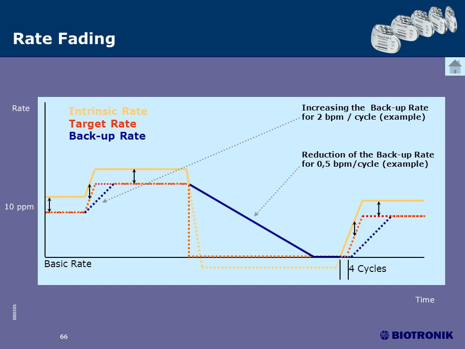 Rate Fading Intrinsic Rate Target Rate Back-up Rate Basic Rate