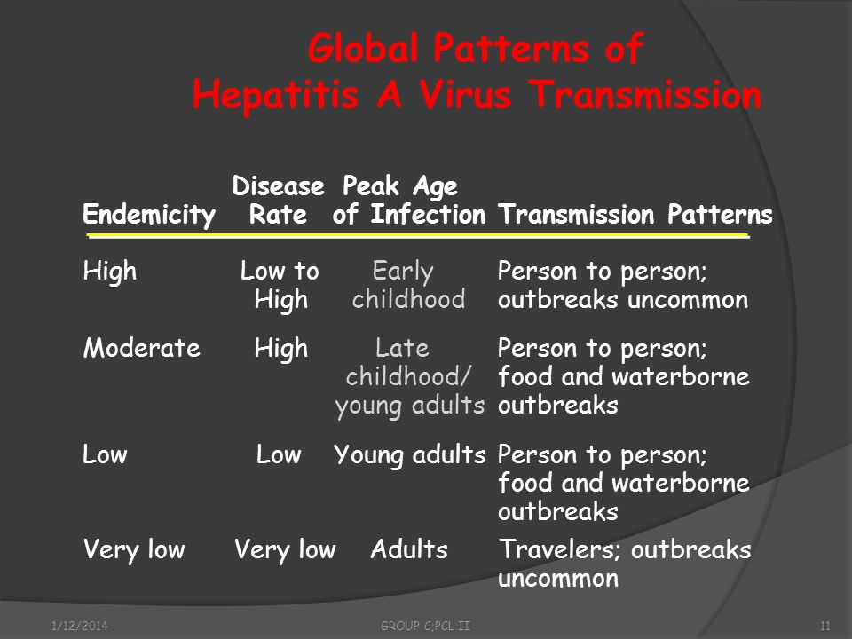 Global Patterns of Hepatitis A Virus Transmission