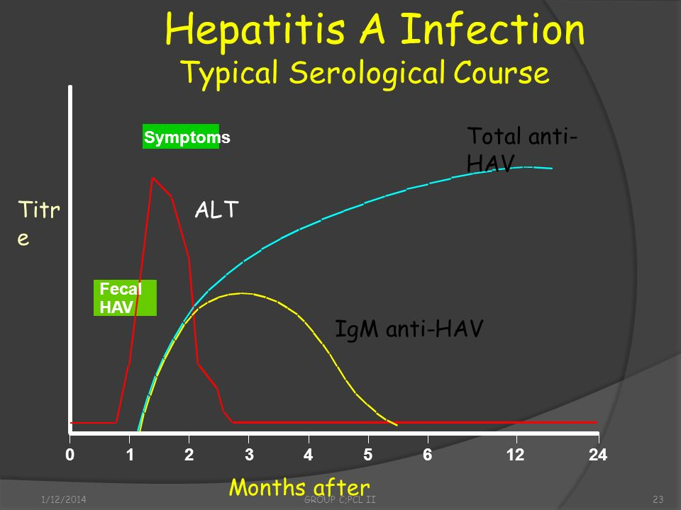 Hepatitis A Infection Typical Serological Course Total anti-HAV Titre
