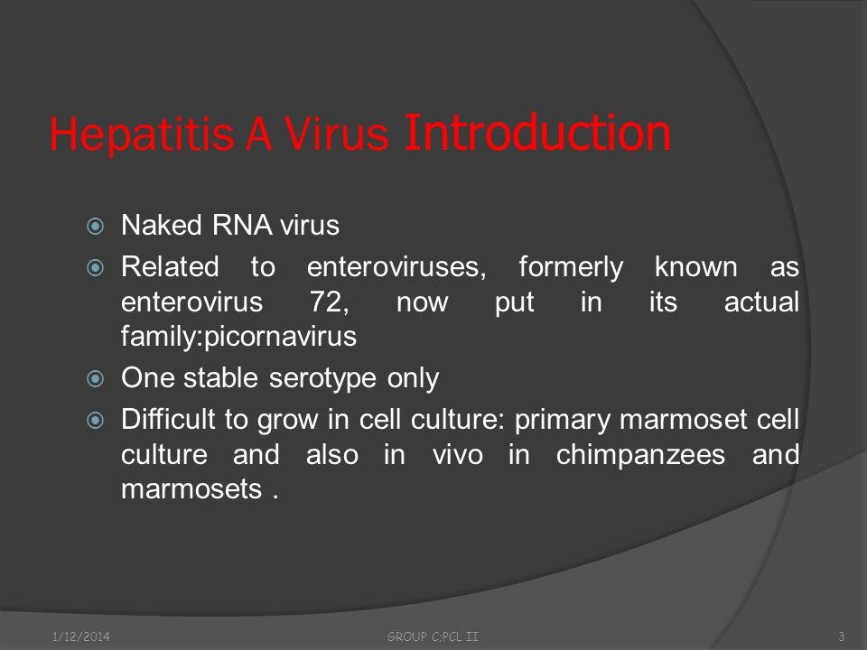 Hepatitis A Virus Introduction
