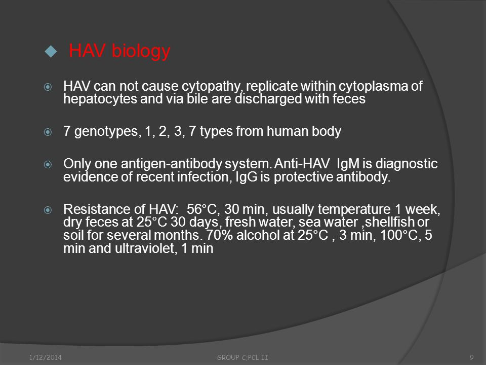 HAV biologyHAV can not cause cytopathy, replicate within cytoplasma of hepatocytes and via bile are discharged with feces.