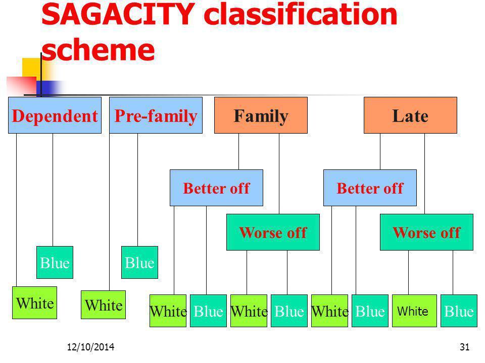 SAGACITY classification scheme
