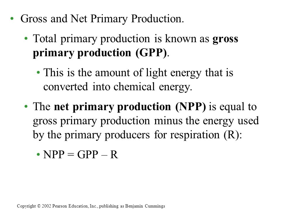Gross and Net Primary Production.