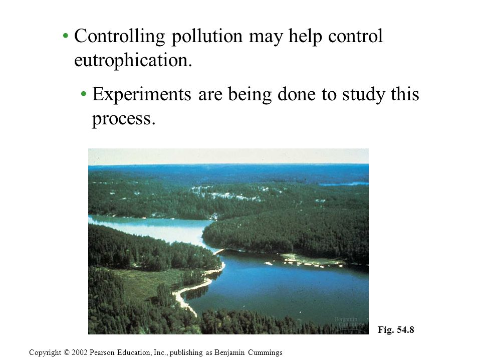 Controlling pollution may help control eutrophication.