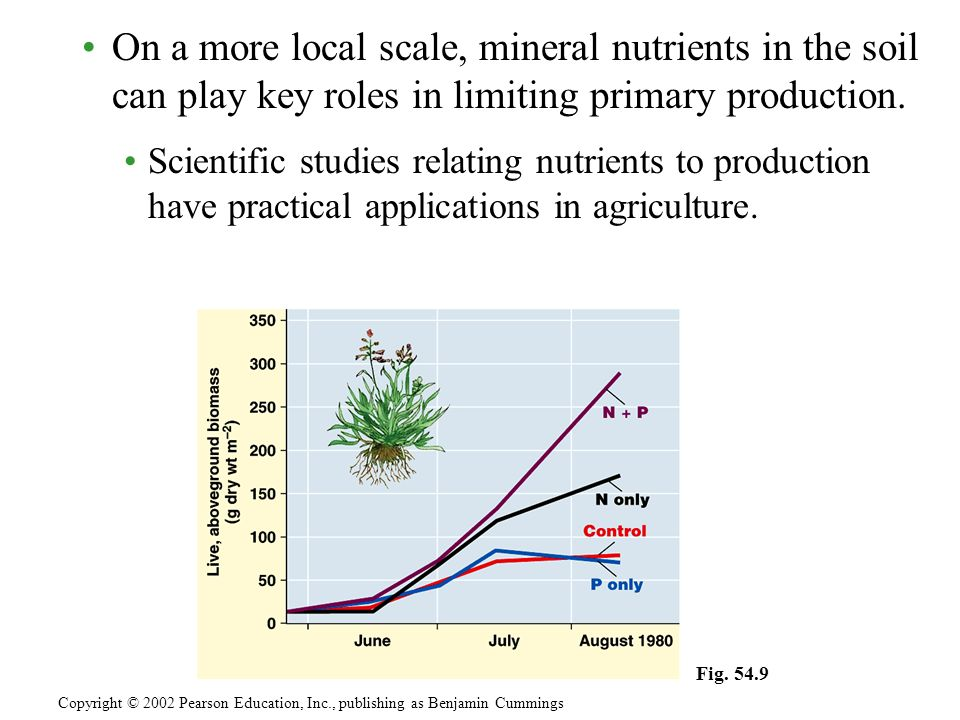 On a more local scale, mineral nutrients in the soil can play key roles in limiting primary production.