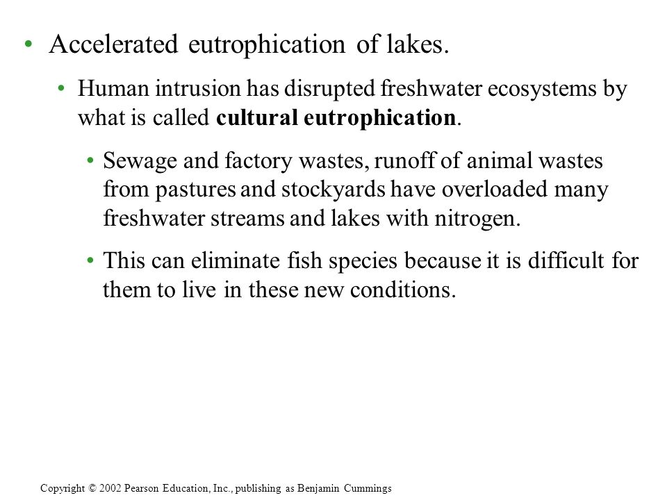 Accelerated eutrophication of lakes.