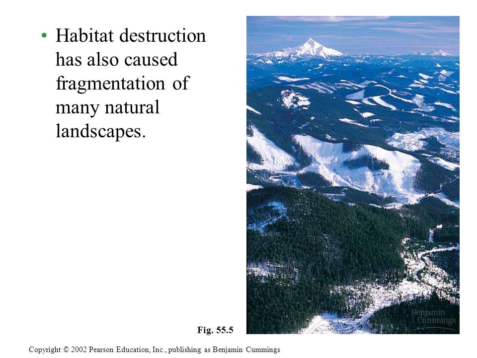 Habitat destruction has also caused fragmentation of many natural landscapes.