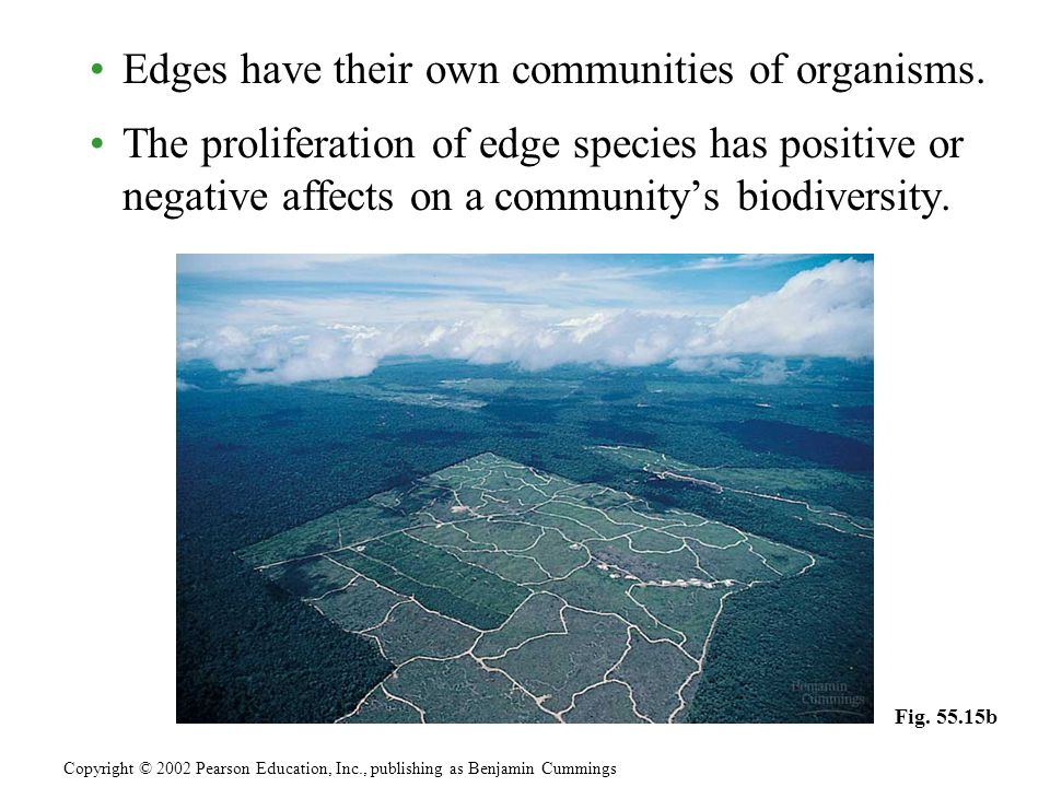 Edges have their own communities of organisms.