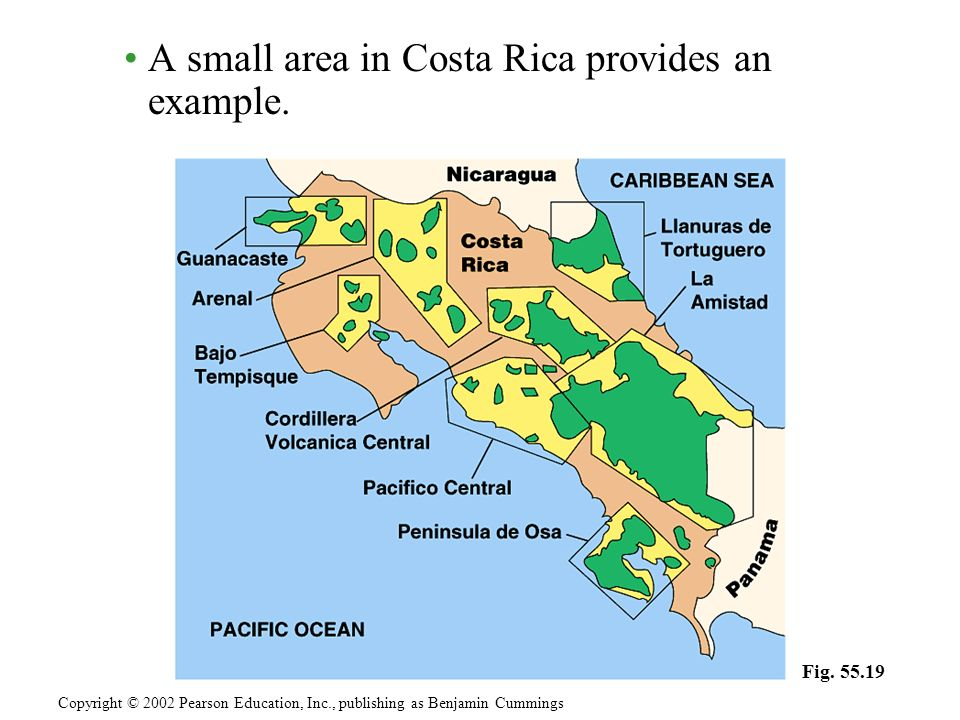 A small area in Costa Rica provides an example.
