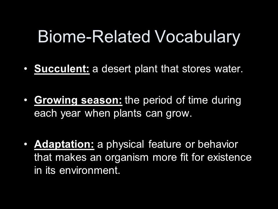 Biome-Related Vocabulary