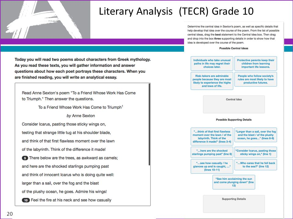 Literary Analysis (TECR) Grade 10