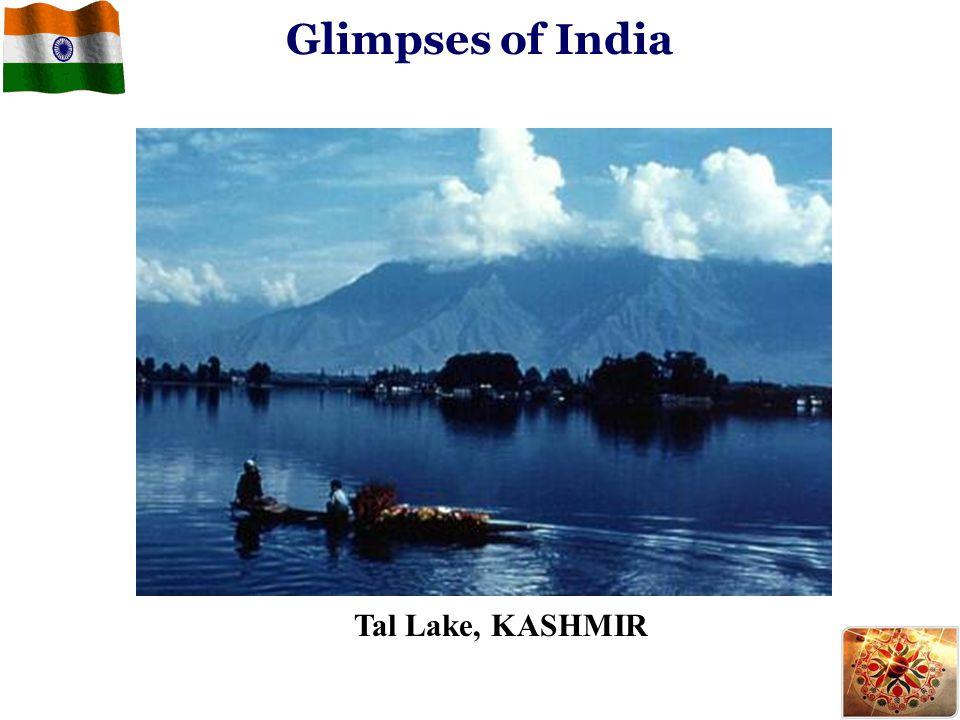 Glimpses of India Tal Lake, KASHMIR