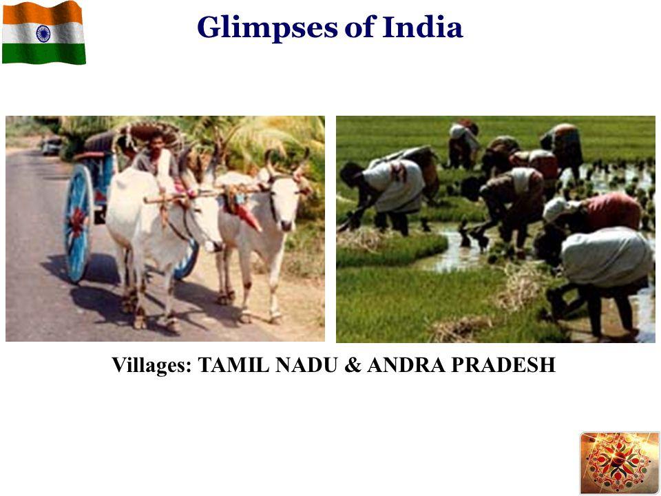 Glimpses of India Villages: TAMIL NADU & ANDRA PRADESH