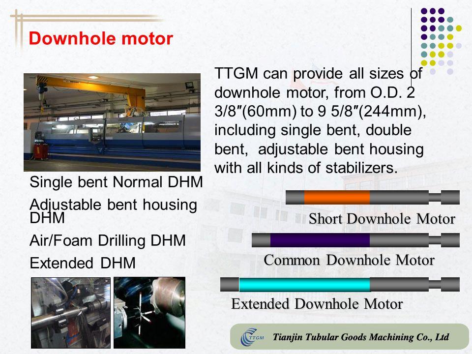 Downhole motor