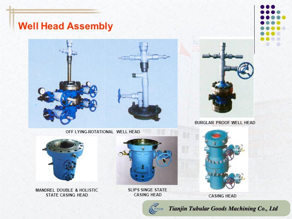 Well Head Assembly BURGLAR PROOF WELL HEAD