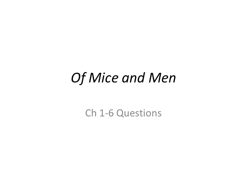 Of Mice and Men Ch 1-6 Questions