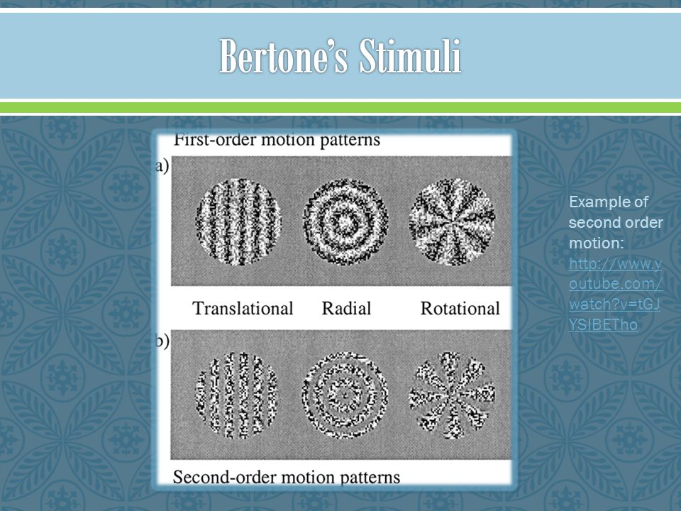 Bertone's Stimuli Example of second order motion: http://www.youtube.com/watch v=tGJYSIBETho