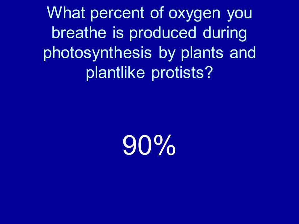 What percent of oxygen you breathe is produced during photosynthesis by plants and plantlike protists