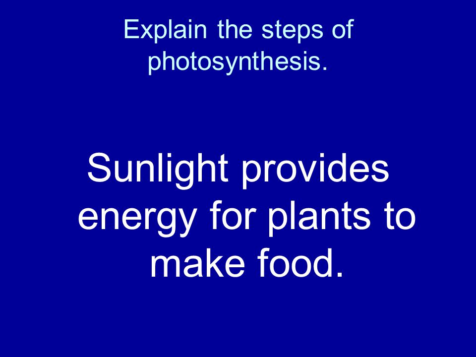 Explain the steps of photosynthesis.