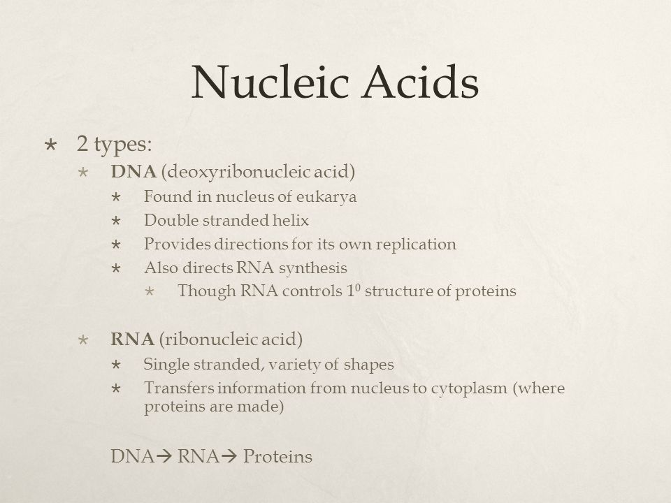 Nucleic Acids 2 types: DNA (deoxyribonucleic acid)