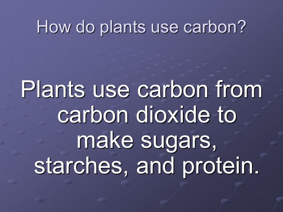 How do plants use carbon
