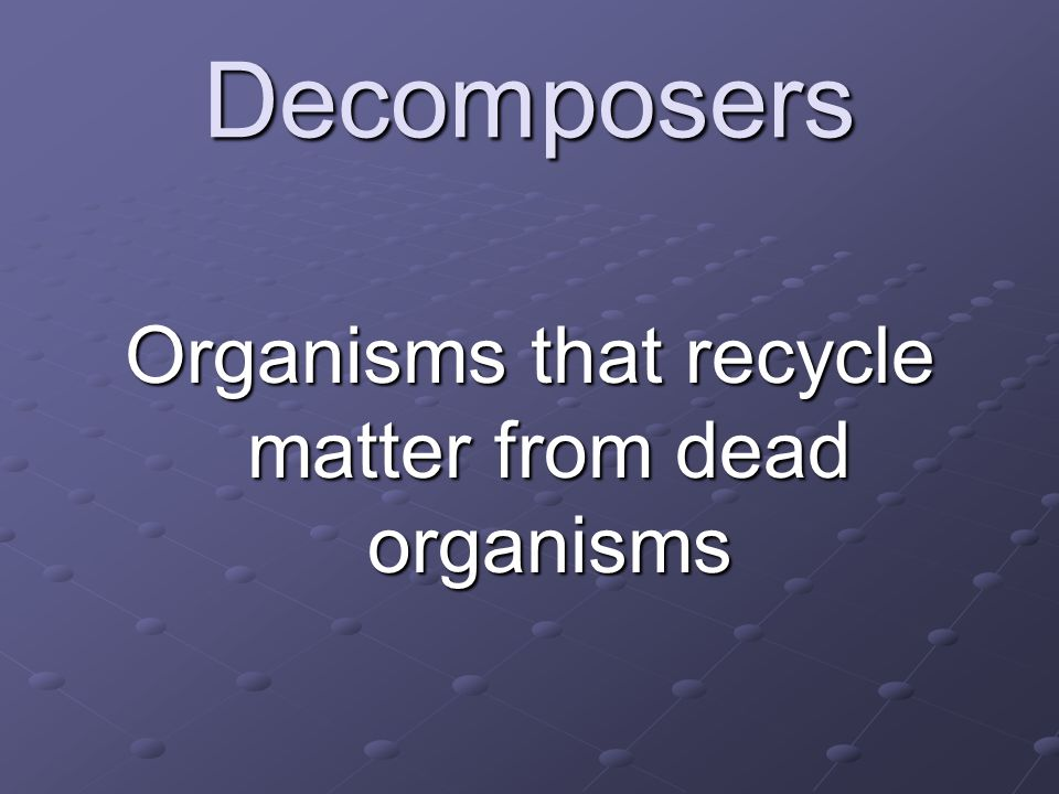 Organisms that recycle matter from dead organisms