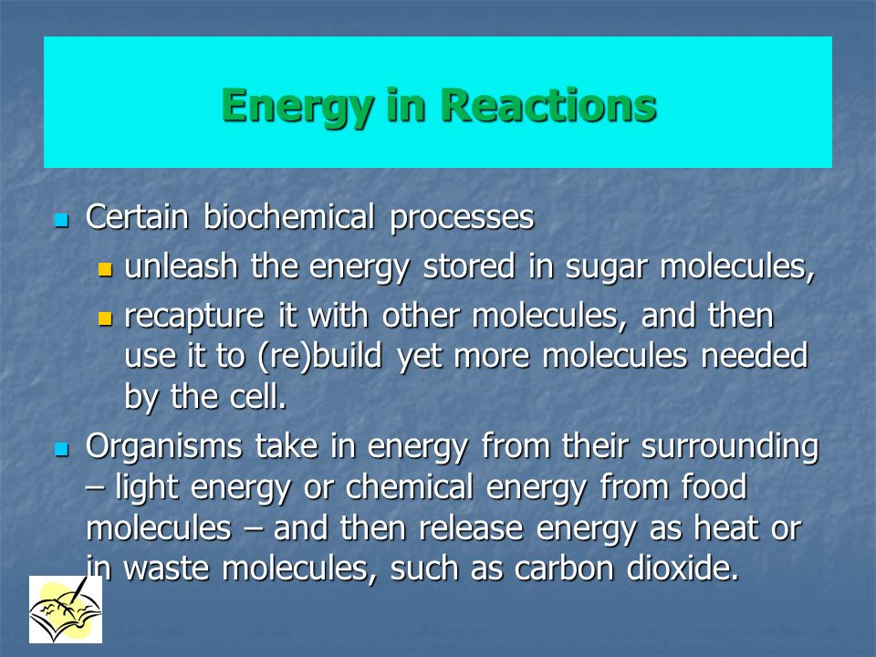 Energy in Reactions Certain biochemical processes